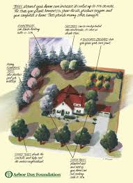 Landscaping Around House by Where To Plant Trees Around House Google Search For The Home