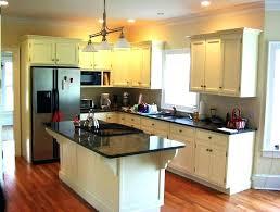 free kitchen cabinet design kitchen cabinet design software or kitchen cabinet software programs
