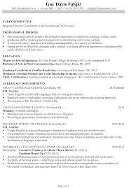 resume chronological order a chronological resume how to write a sample program director