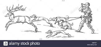 drawn hunting deer hunting pencil and in color drawn hunting