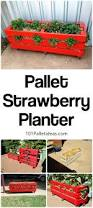 The 25 Best Diy Pallet by The 25 Best Strawberry Planters Ideas On Pinterest Strawberry