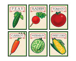 what to grow in a vegetable garden vermont garden journal planning your spring vegetable garden