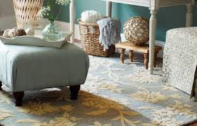 Home Goods Area Rugs Awesome Home Goods Rugs Within Area Rugs Home Goods Dfwago Home
