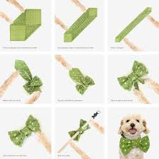 25 unique bow tie collar ideas on bow ties bow