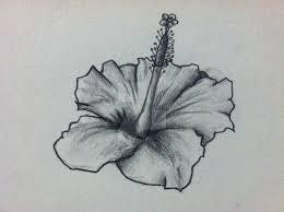 hibiscus flower tattoo design by thelinesthattied on deviantart