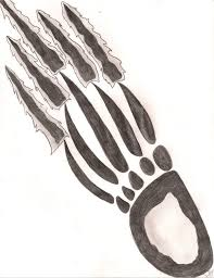 bearclaw scratch design by khourilupekdutty on deviantart