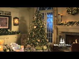 balsam hill customer reviews and testimonials how real are