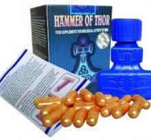 hammer of thor jual obat kuat kaltim