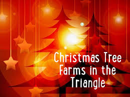christmas tree farms in the triangle