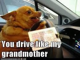 Meme Grandmother - image 642645 you drive like my f king grandmother know