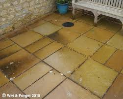 How To Remove Lichen From Patio Wet U0026 Forget Moss Mould Lichen U0026 Algae Remover 5 Litre Cleans