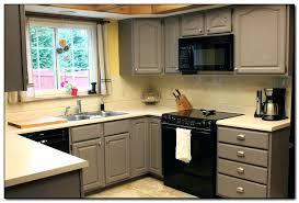 kitchen cabinet color ideas for small kitchens kitchen cabinets colors datavitablog com