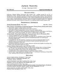 bank resume builder 100 images resume builder templates 28
