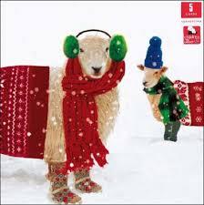dog charity christmas cards christmas lights decoration
