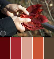 fall color pallette fall for autumn color palettes ty pennington