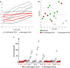 metabolomics profiling reveals different patterns in an animal
