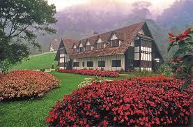 cameron highlands a cool retreat in the malaysian mountains expatgo