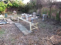 learn beekeeping at oxleas wood apiary e shootershill