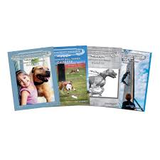 american pit bull terrier registry adba american pit bull terrier gazette pit bull magazine