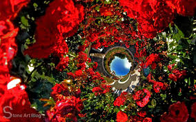 stone art blog roses are red the use of red in the landscape