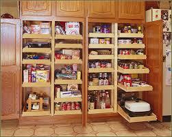 Wayfair Storage Cabinet One Piece Kitchen Unit Food Storage Cabinet Wayfair Kitchen