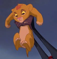 image newborn simba png lion king wiki fandom powered