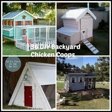 36 diy backyard chicken coops