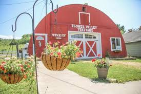 Flower Area - flower valley vineyard red wing mn top tips before you go