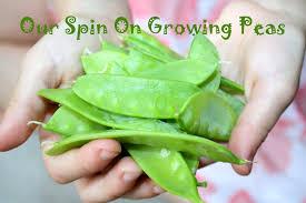 raising an eco tot 10 environmentally friendly activities for