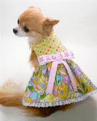 dog boutique designer dog clothing and accessories for your dog