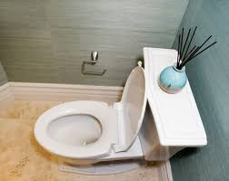 How Many Times Should You Go To The Bathroom How To Replace A Toilet Flapper