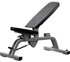 Life Fitness Multi Adjustable Bench Benches Bodybuilding