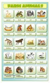 pin by valéria magyar on angol pinterest learning english