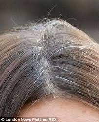 gray female pubic hair pics no stress doesn t turn your hair grey and men s beards really do