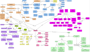What Is A Concept Map Foundations For Algebra Concept Map Reflections Of A Second Any