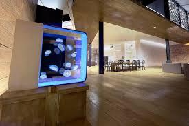 aquarium bureau un aquarium pour méduses sur votre bureau w3sh com