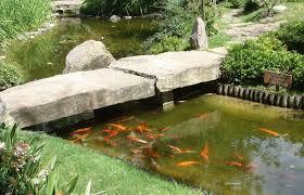 imagenes de jardines japones jardín japonés en montevideo 26 opiniones y 14 fotos