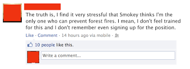 Only You Can Prevent Forest Fires Meme - only you can prevent forest fires