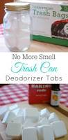 Designer Kitchen Trash Cans by Best 20 Trash Can Ideas Ideas On Pinterest Rustic Kitchen Trash