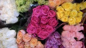 seattle flowers seattle s 5 best flower shops seattle refined