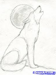 step 8 how to draw a howling wolf kawaii pinterest wolf