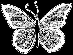 butterfly zentangle julie erin designs