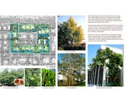 native plants of india adira resort