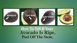 How To Check If You by How To Tell If Your Avocado Is Ripe The Dr Oz Show