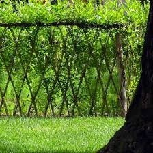 living fence 11 approaches to a landscape boundary bob vila
