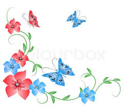 flowers ornament with butterfly stock vector colourbox