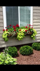 Porch Rail Flower Boxes by Best 25 Window Box Flowers Ideas On Pinterest Window Boxes