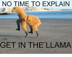 Llama Meme - 25 best memes about get in the llama get in the llama memes
