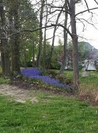 boulevard park city of lake saint louis missouri usa