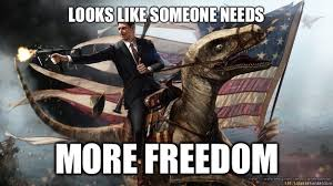 Freedom Meme - looks like someone needs more freedom murica quickmeme